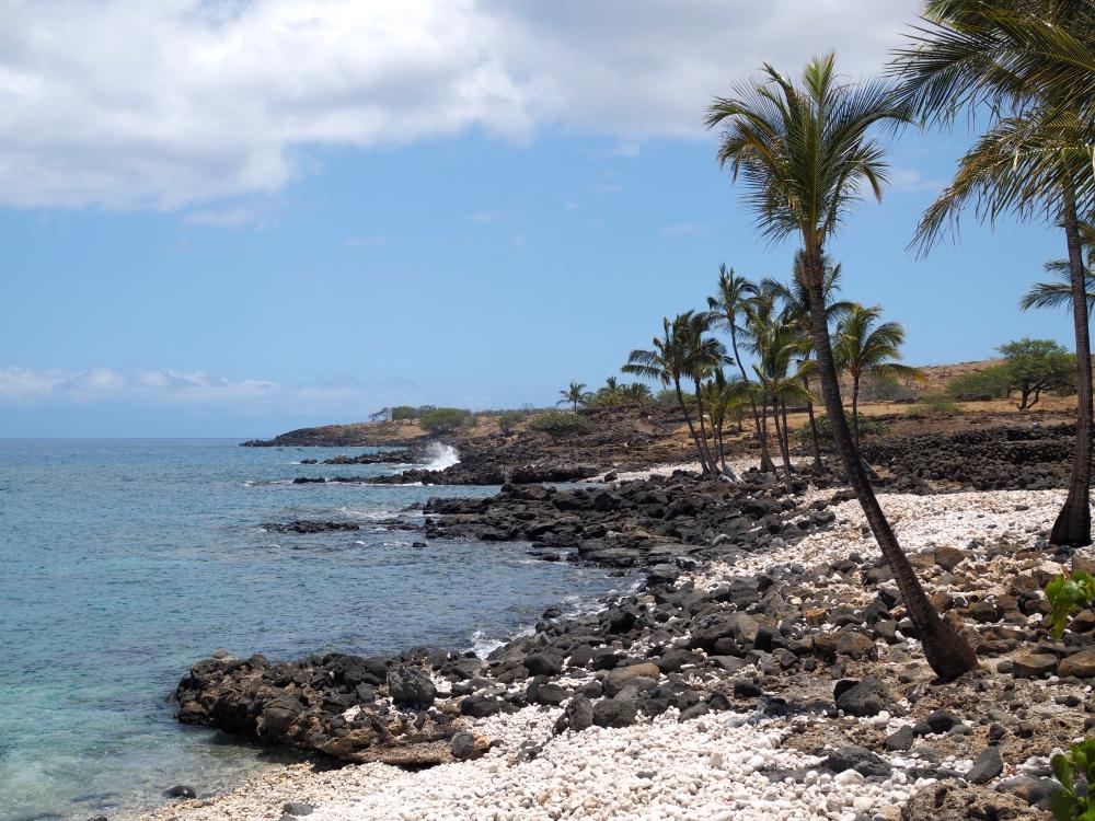 Rocky Shoreline in the Hawaiian Desert
