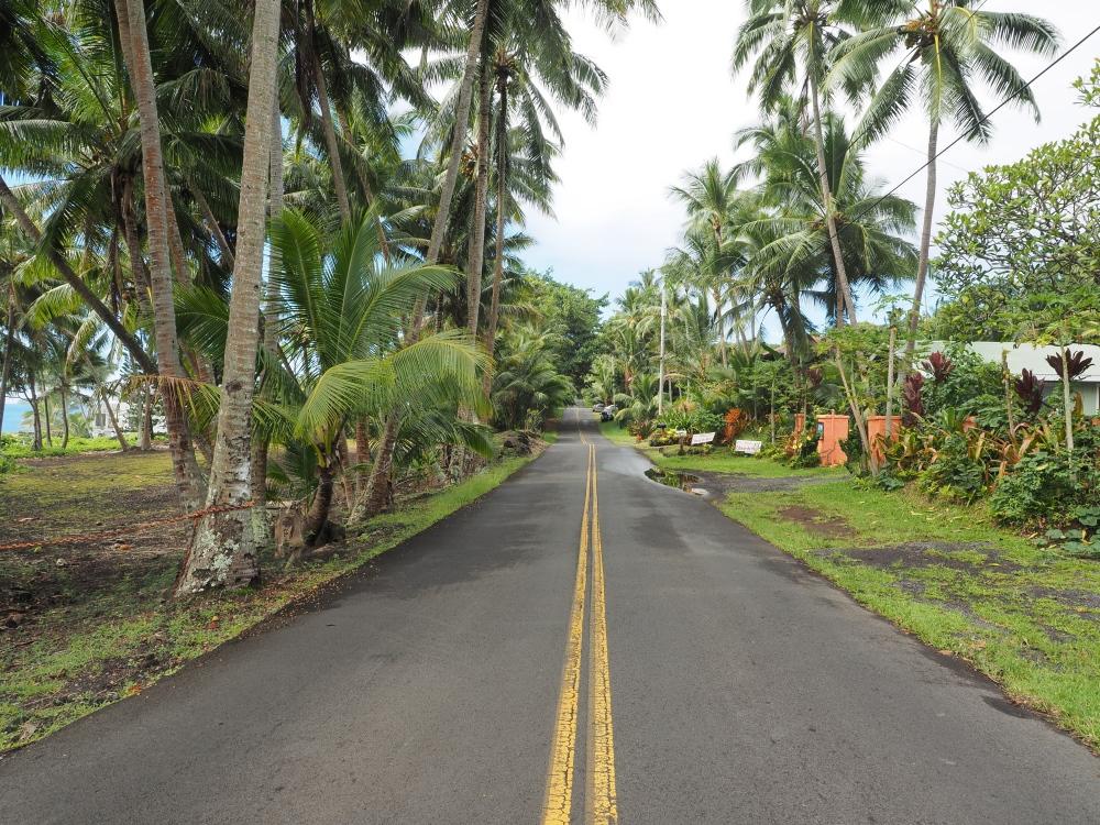 Puna District Near Old Town Kalapana