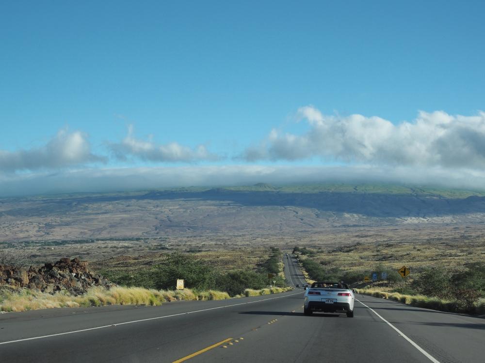 Looking North Toward Kohala Volcano