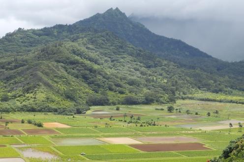 Hanaleii Valley, Kauai